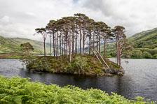aka-Scotland-2016-07-03__D5X1965_6_7.jpg