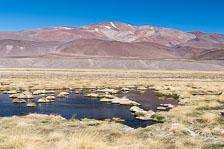 aka-Atacama-2016-12-28__D5X6272.jpg