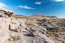 aka-Atacama-2017-01-03__D5X7729.jpg