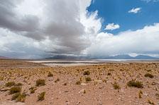 aka-Atacama-2017-01-05__D5X8545.jpg