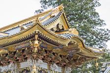 aka-Japan-2017-03-23__D5X0166.jpg