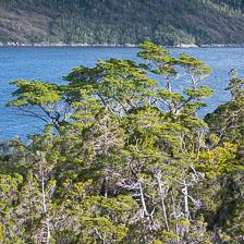 aka-Patagonia-2018-03-28__D5X8127.jpg