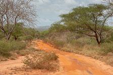aka-Tanzania-2019-02-04__D8X1535.jpg