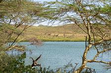 aka-Tanzania-2019-02-06__D8X1567.jpg
