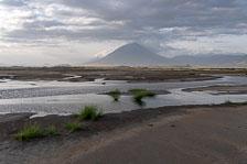 aka-Tanzania-2019-02-20__D5X2422.jpg