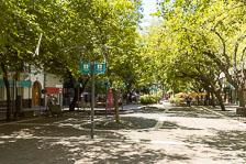 aka-Mendoza-2020-02-22_Img000540.jpg