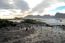 an-Antarctic-Quest-2009-01-27_DSC_3788.jpg