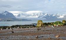 an-Antarctic-Quest-2009-01-27_DSC_4028.jpg