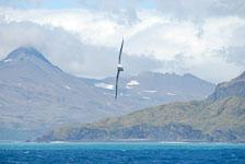 an-Antarctic-Quest-2009-01-27_DSC_4622.jpg