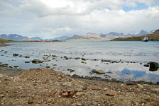 an-Antarctic-Quest-2009-01-28_DSC_5837.jpg