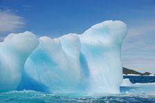an-Antarctic-Quest-2009-01-29_DSC_6589.jpg