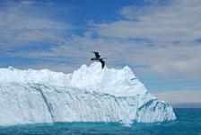 an-Antarctic-Quest-2009-01-29_DSC_6627.jpg