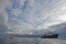 an-Antarctic-Quest-2009-02-03_DSC_7975.jpg