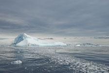 an-Antarctic-Quest-2009-02-03_DSC_8158.jpg