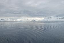 an-Antarctic-Quest-2009-02-03_DSC_8375.jpg