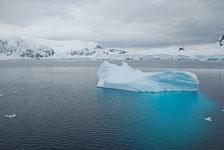 an-Antarctic-Quest-2009-02-03_DSC_8459.jpg