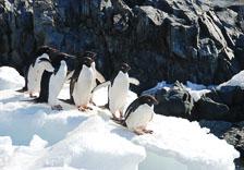 an-Antarctic-Quest-2009-02-04_DSC_0053.jpg
