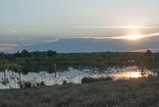 an-Pantanal-2011-08-07_DSC_1438.jpg